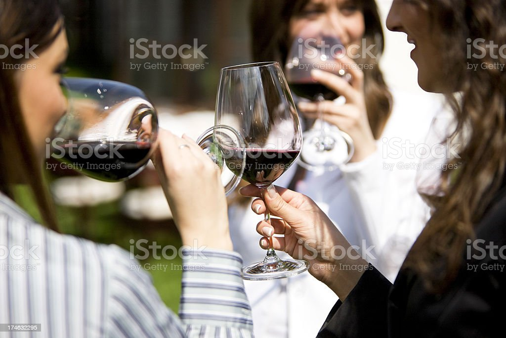 Friends with wine royalty-free stock photo