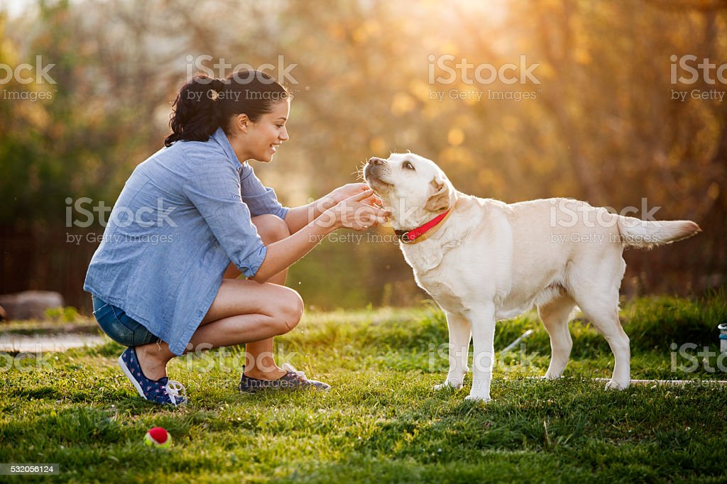 friendship royalty-free stock photo