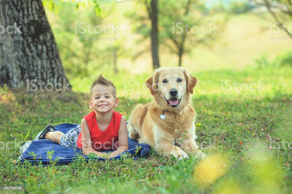 Friendship with the dog stock photo