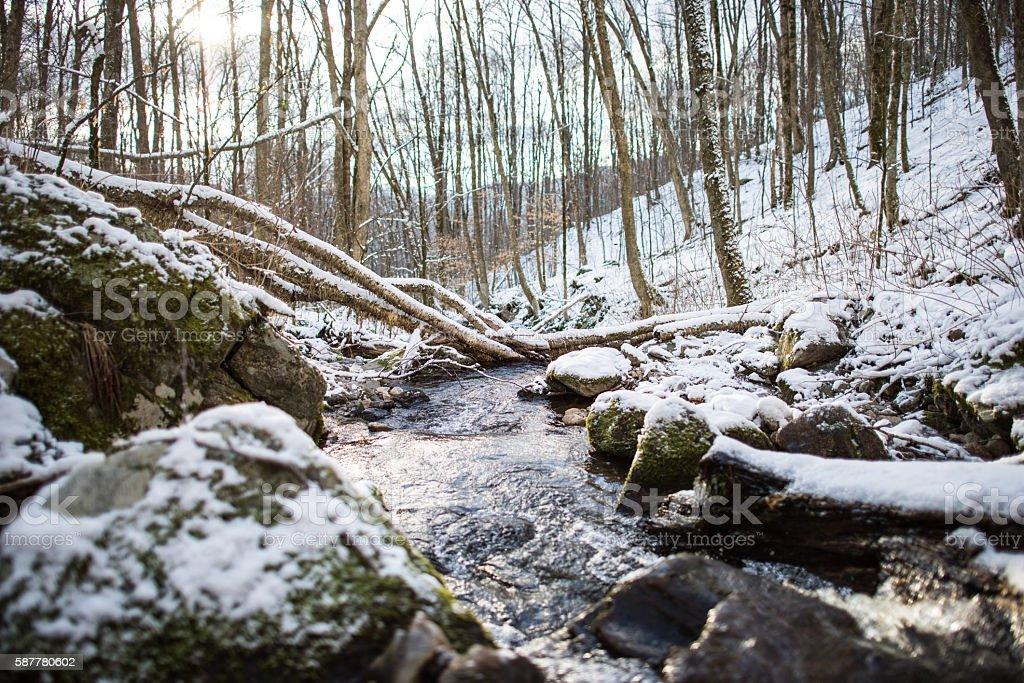 Frigid Mountain Stream stock photo