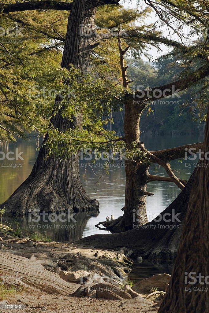 Frio River at Garner State Park in Texas Hill Country royalty-free stock photo