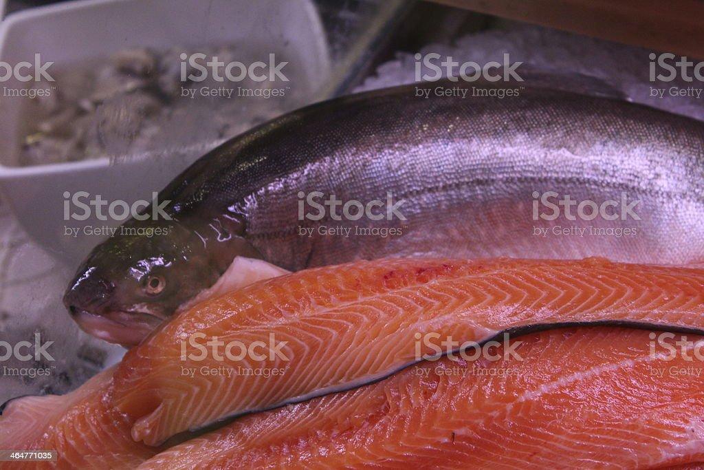 frischer Fisch stock photo