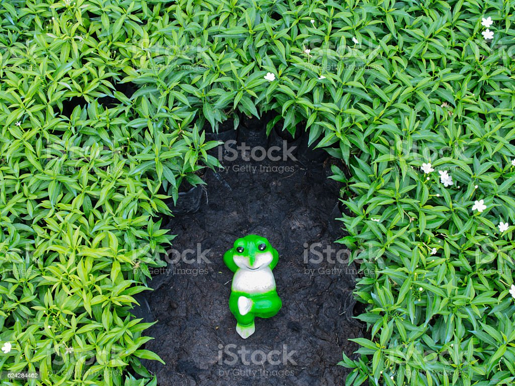 Frog Doll Relaxing stock photo