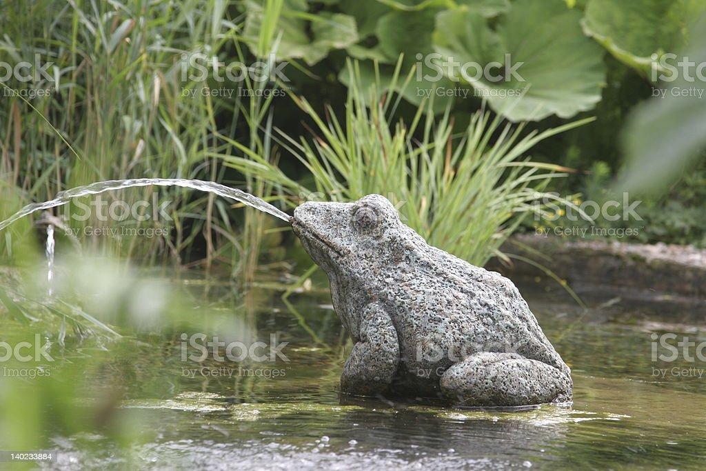 Frog fountain stock photo