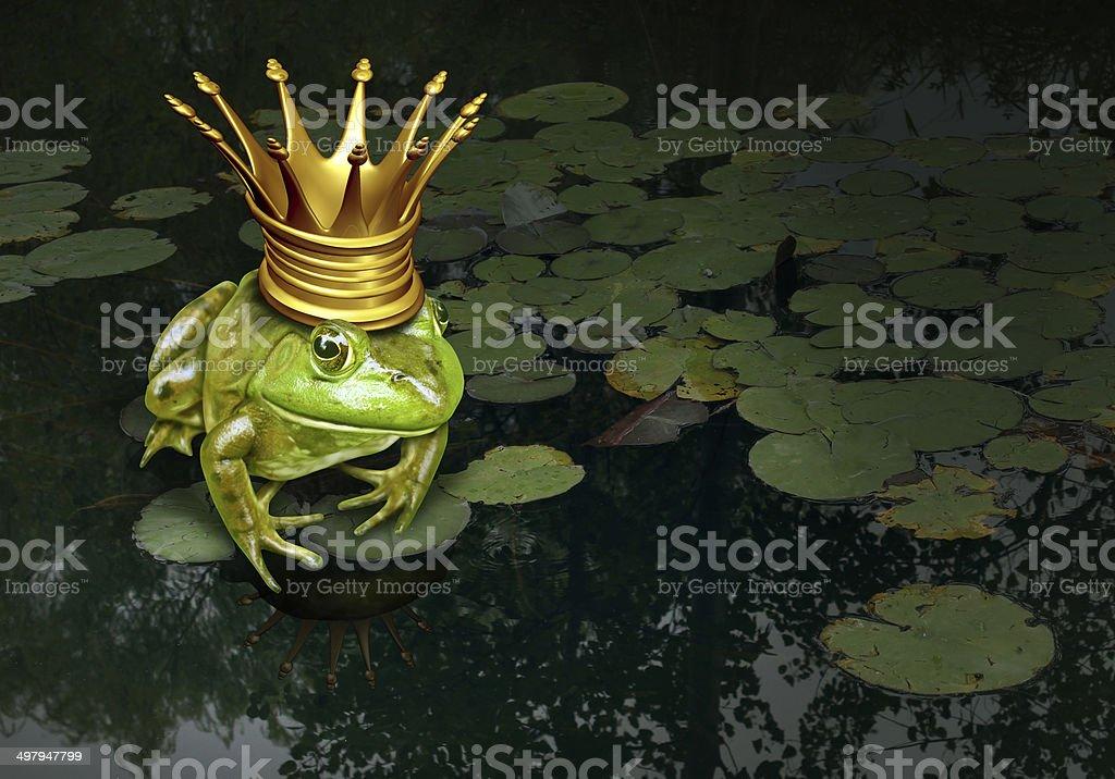 Frog Prince Concept stock photo