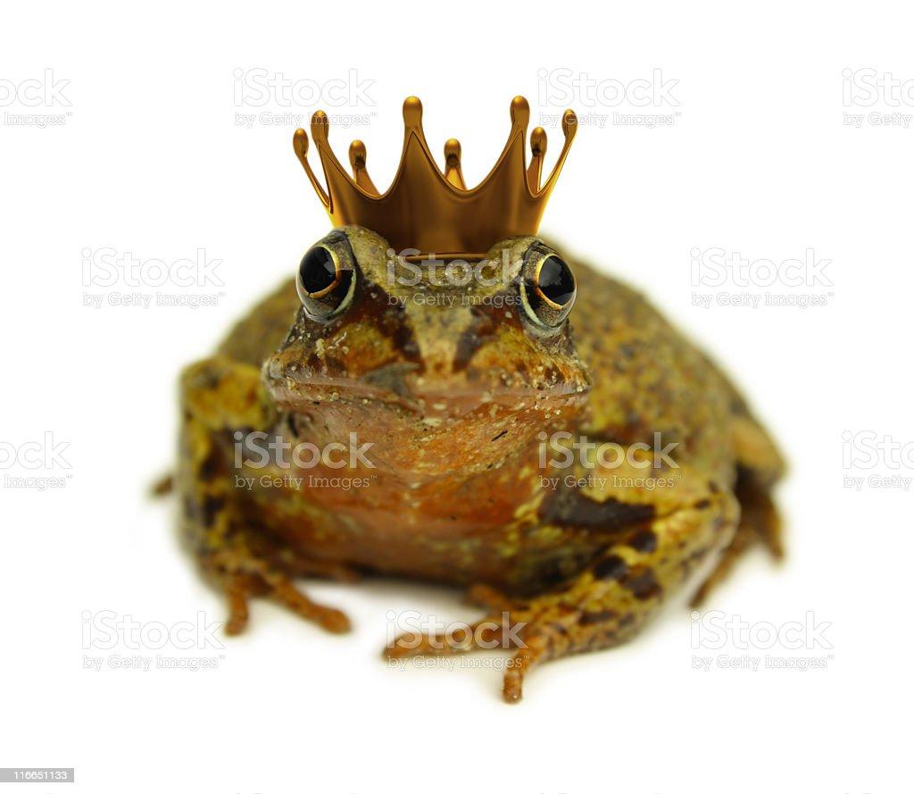 Frog Prince royalty-free stock photo