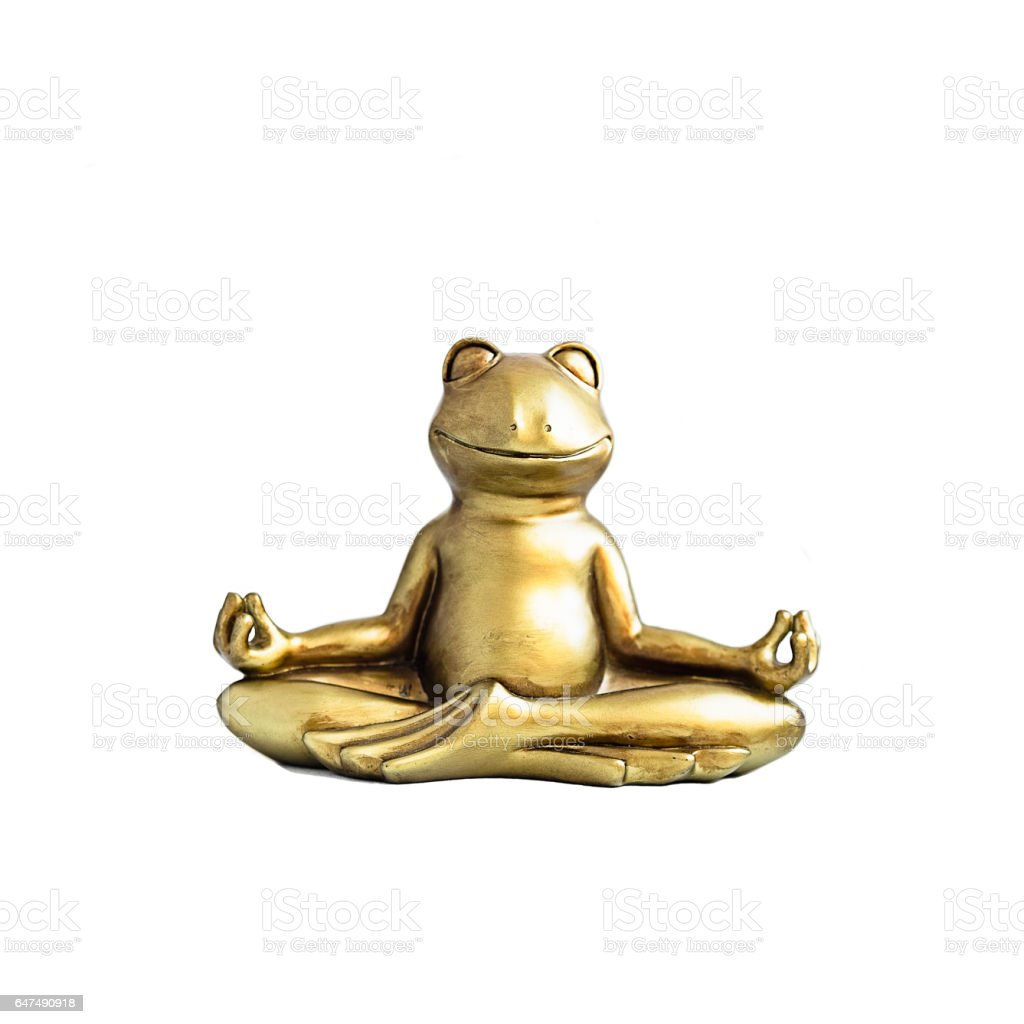 Frog sitting in lotus pose stock photo