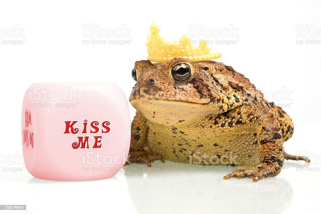 Frog Wearing Crown Beside Kiss Me Dice stock photo