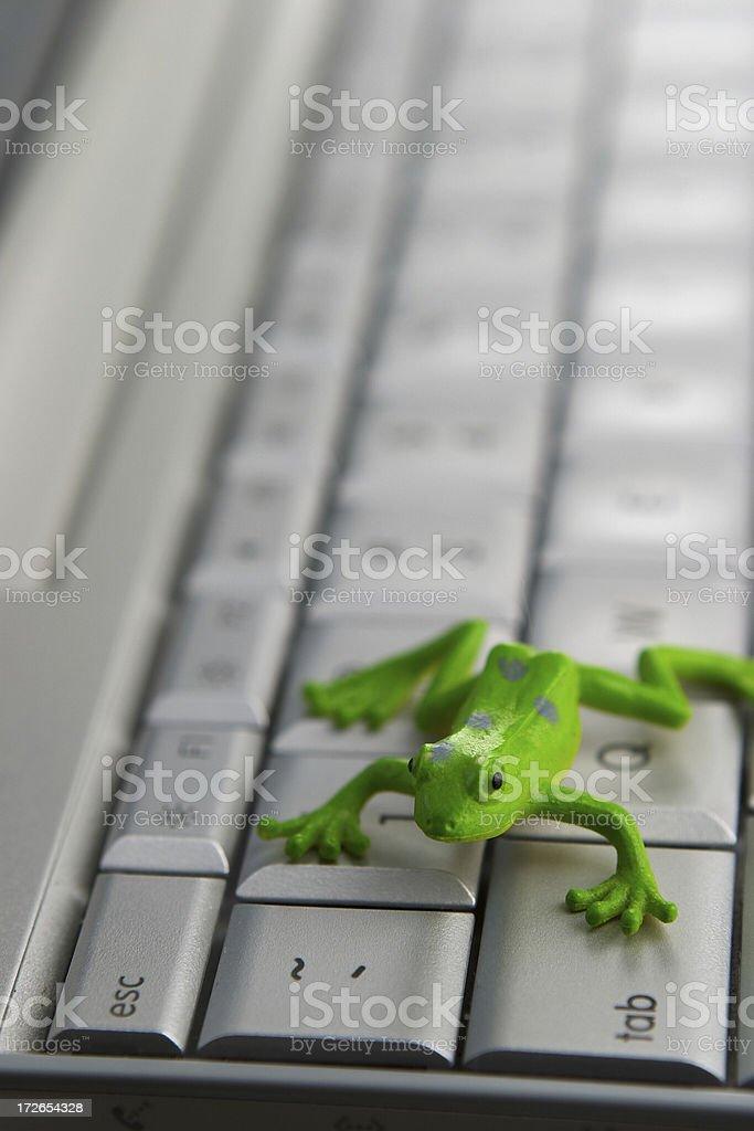 Froggy Escape stock photo
