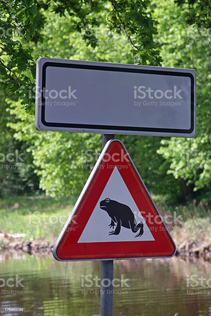 Frog's right of way royalty-free stock photo