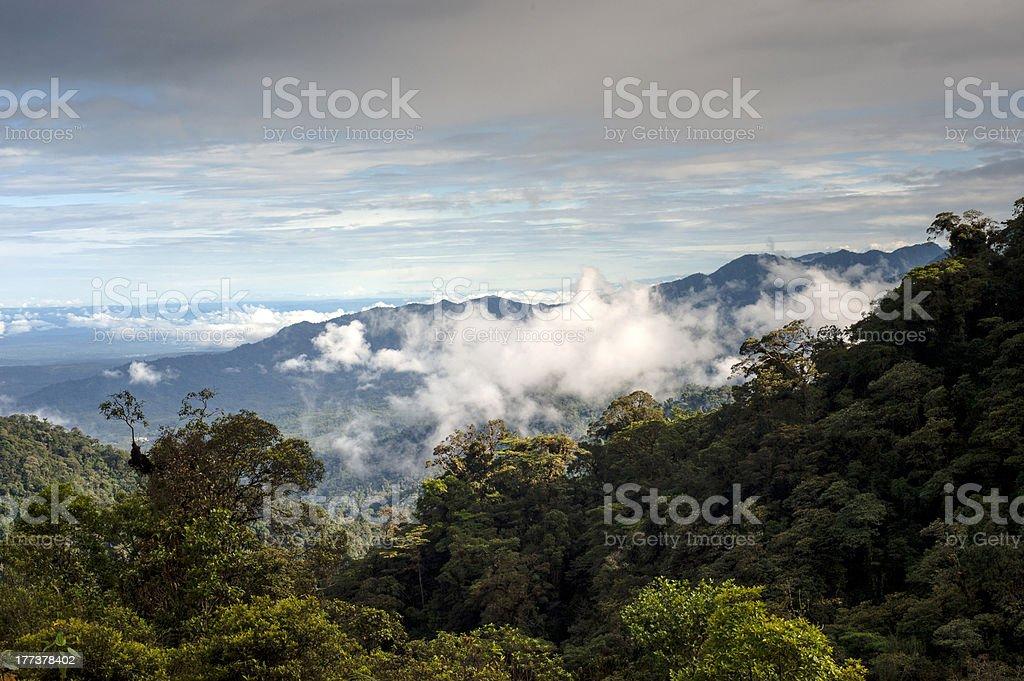 From Andes to Amazon, Ecuador stock photo