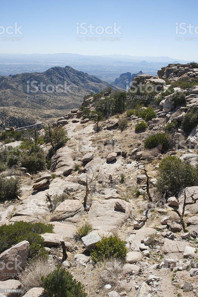 From Desert Floor to Mountain Tops stock photo