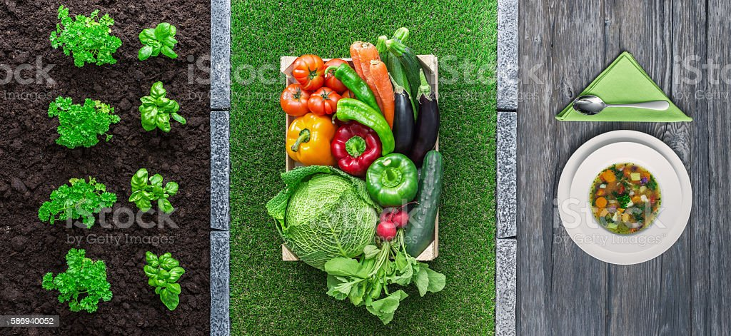 From farm to table stock photo