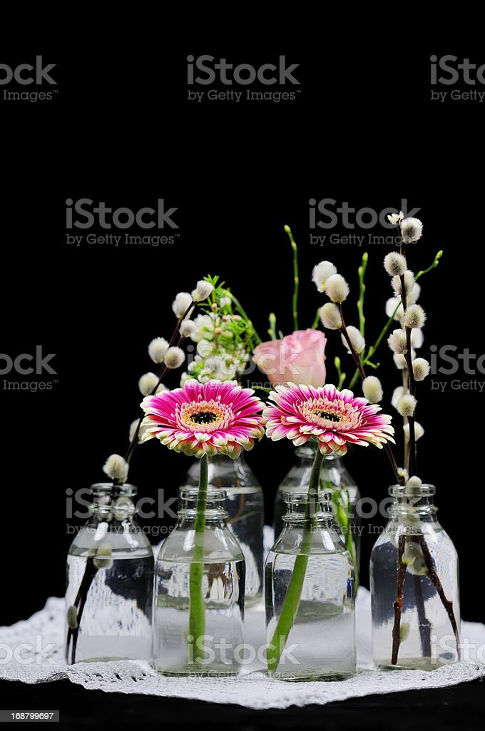 from spring royalty-free stock photo