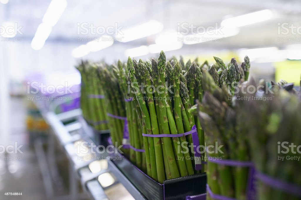 From the farm to the store- the process stock photo