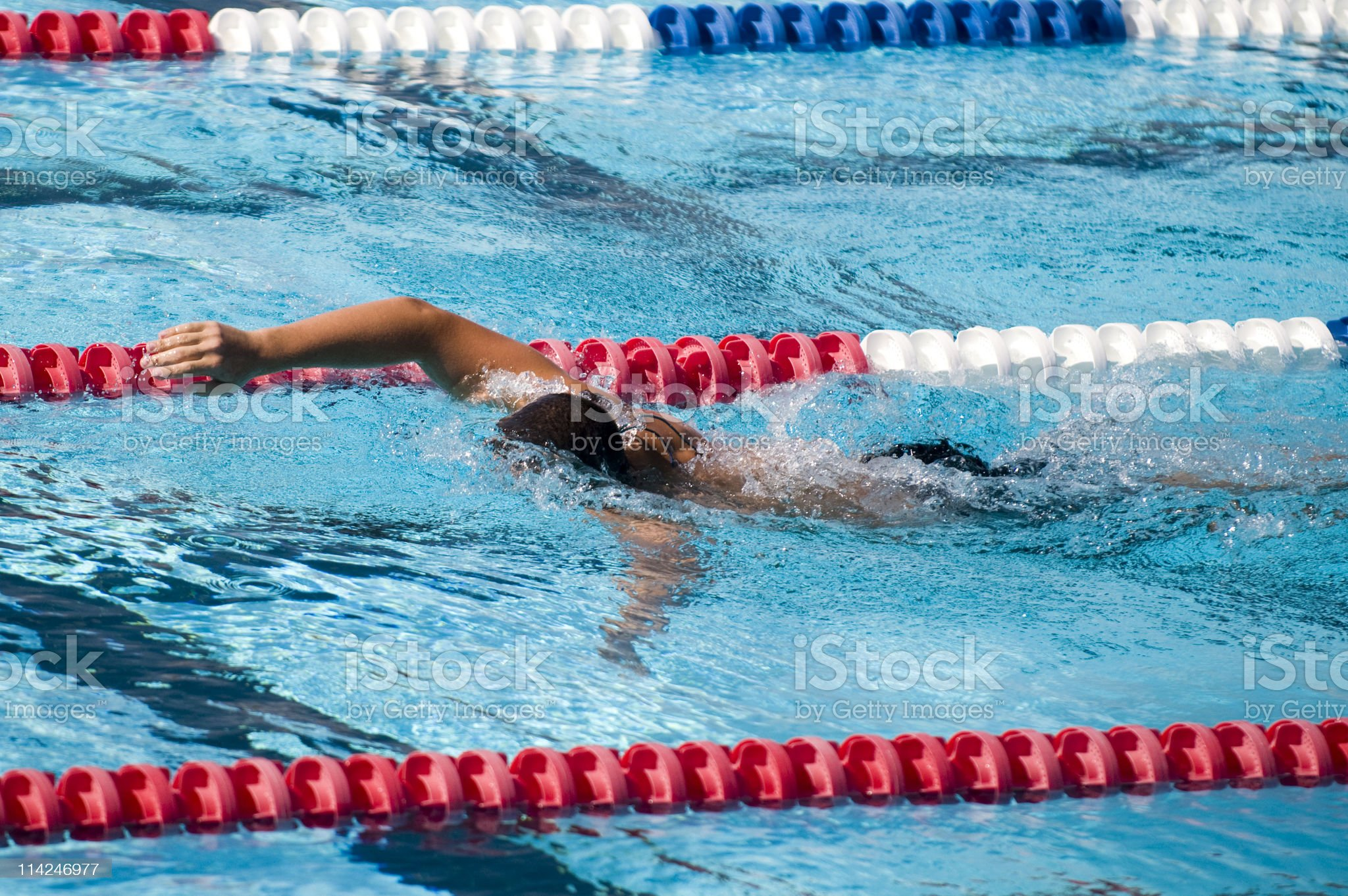 Front Crawl Swimmer royalty-free stock photo