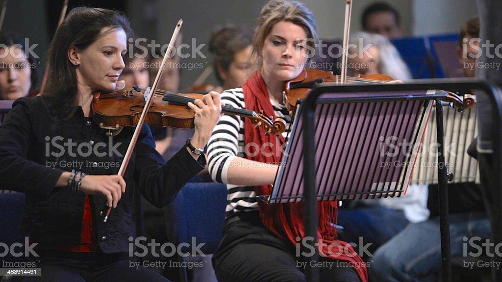 Front desk violins stock photo