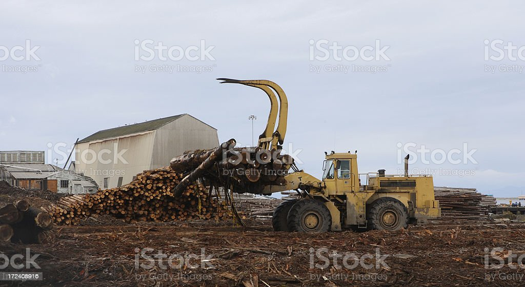 Front End Loader Lifting Logs royalty-free stock photo