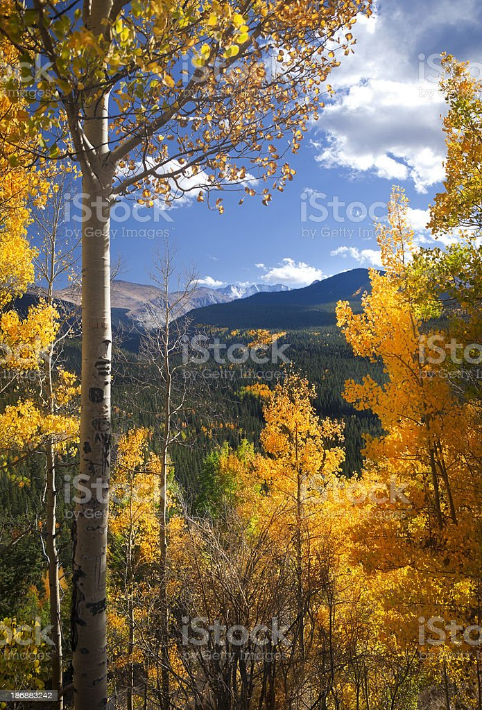 Front Range Fall Color in Colorado stock photo