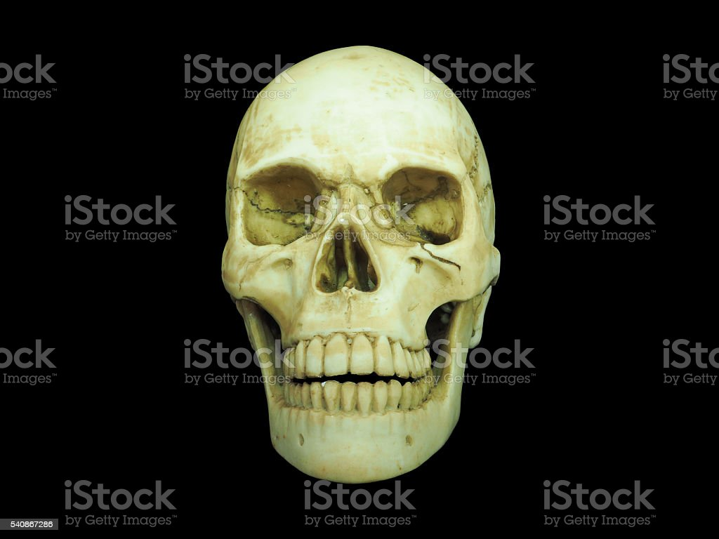 Front view of human skull on isolated black background stock photo