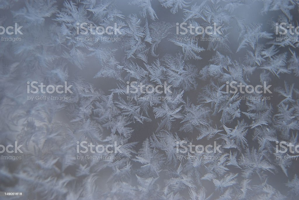 Frost 3 royalty-free stock photo