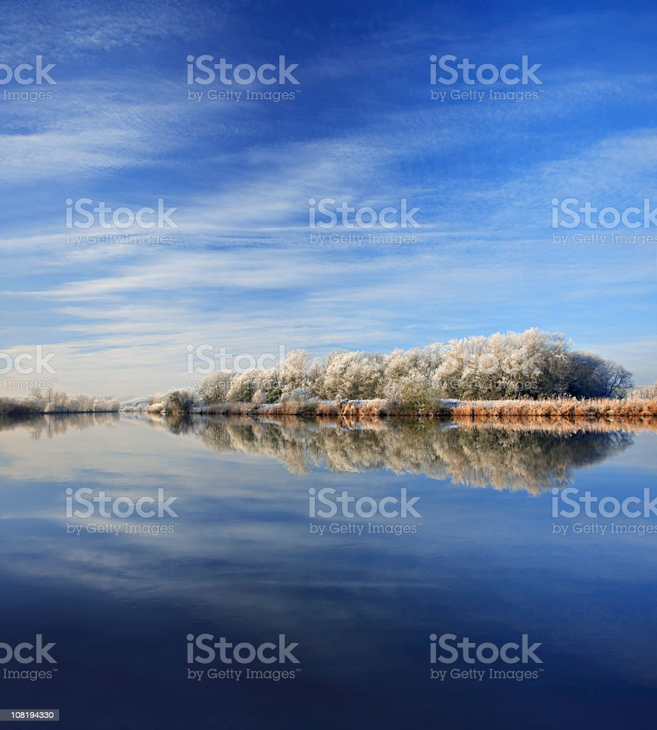 Frost Covered Trees Along River During Day royalty-free stock photo