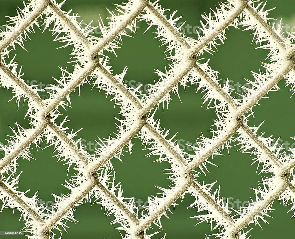 Frost en valla con fondo verde foto de stock libre de derechos