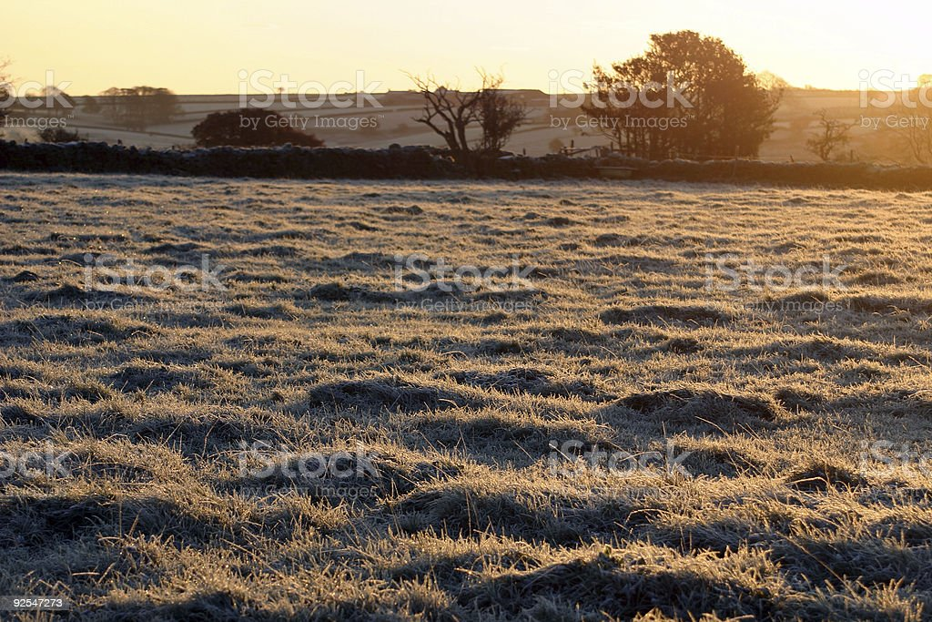 frost on the grass early winter morning royalty-free stock photo