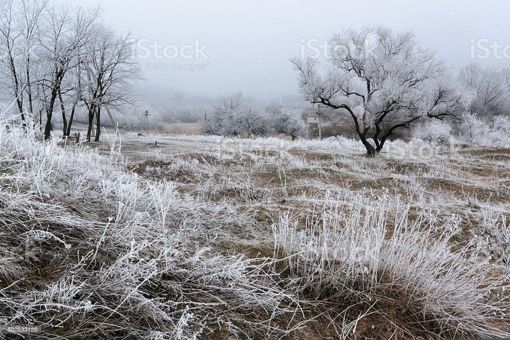 Frosted mañana hill IV foto de stock libre de derechos