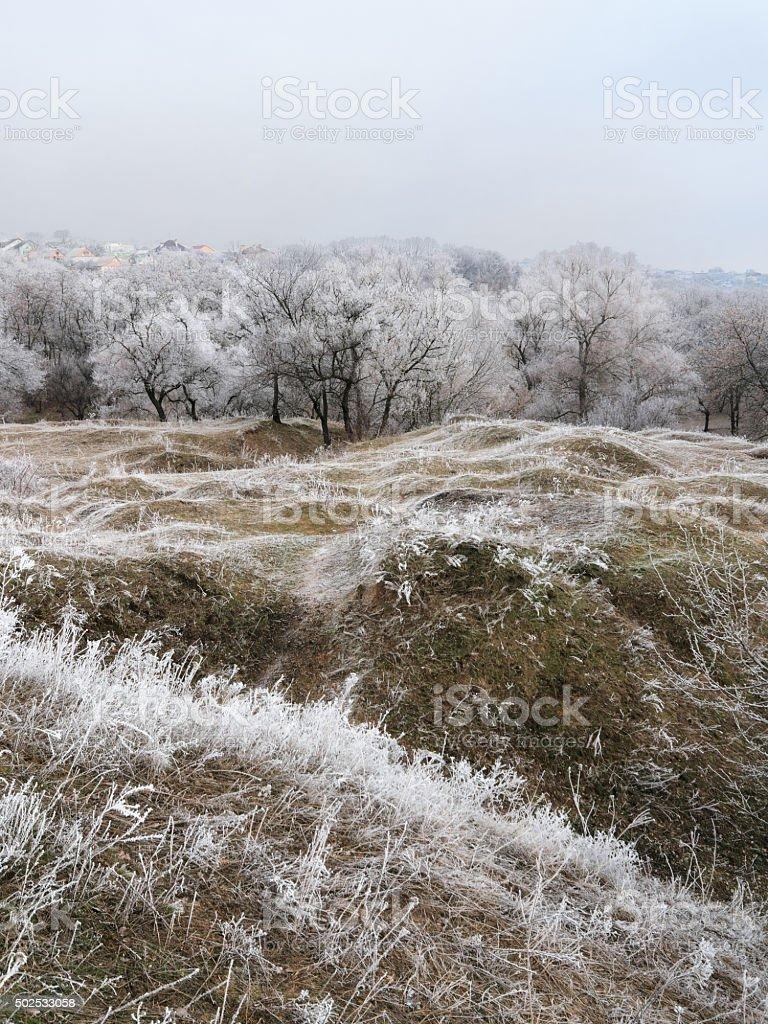 Frosted mañana hill foto de stock libre de derechos