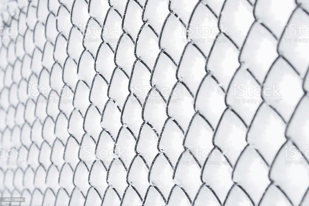 Frosted Net (Fence) - 36 Mpx royalty-free stock photo
