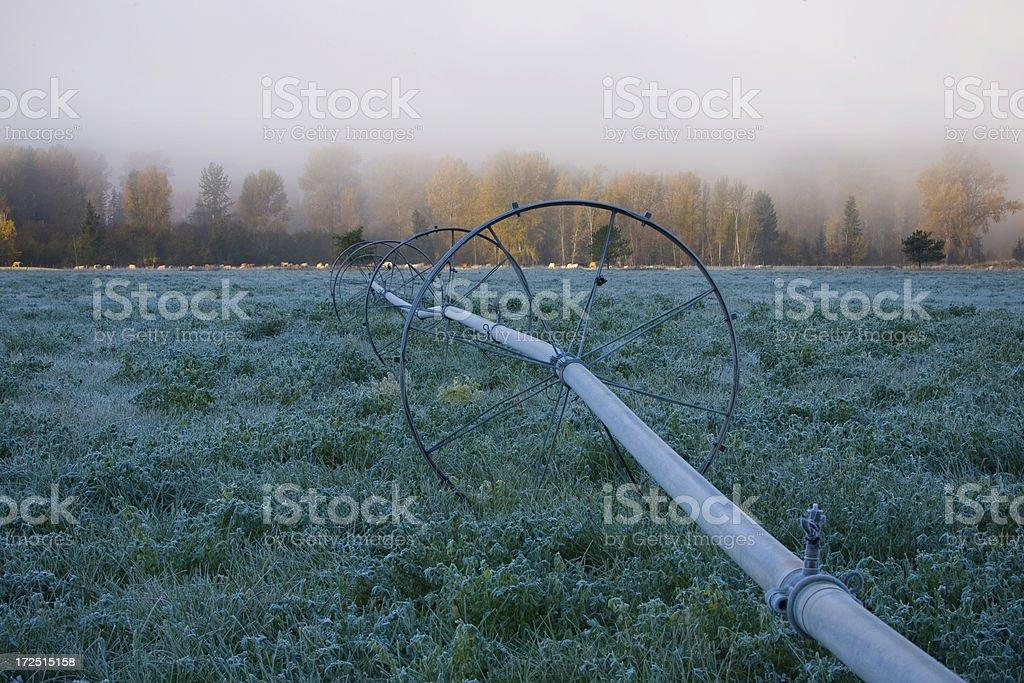 冷たい秋の朝 ロイヤリティフリーストックフォト
