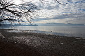 Frosty Lake Constance