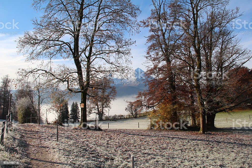 Frosty morning in the mountains stock photo