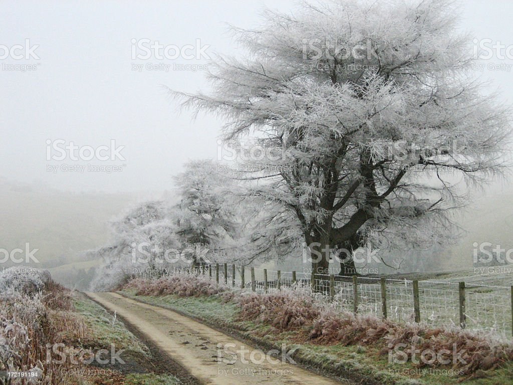 Frosty morning in Wales royalty-free stock photo