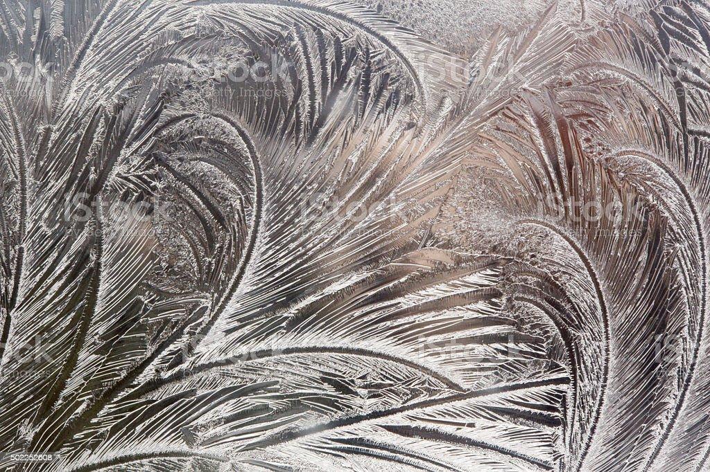 Frosty pattern at a window stock photo
