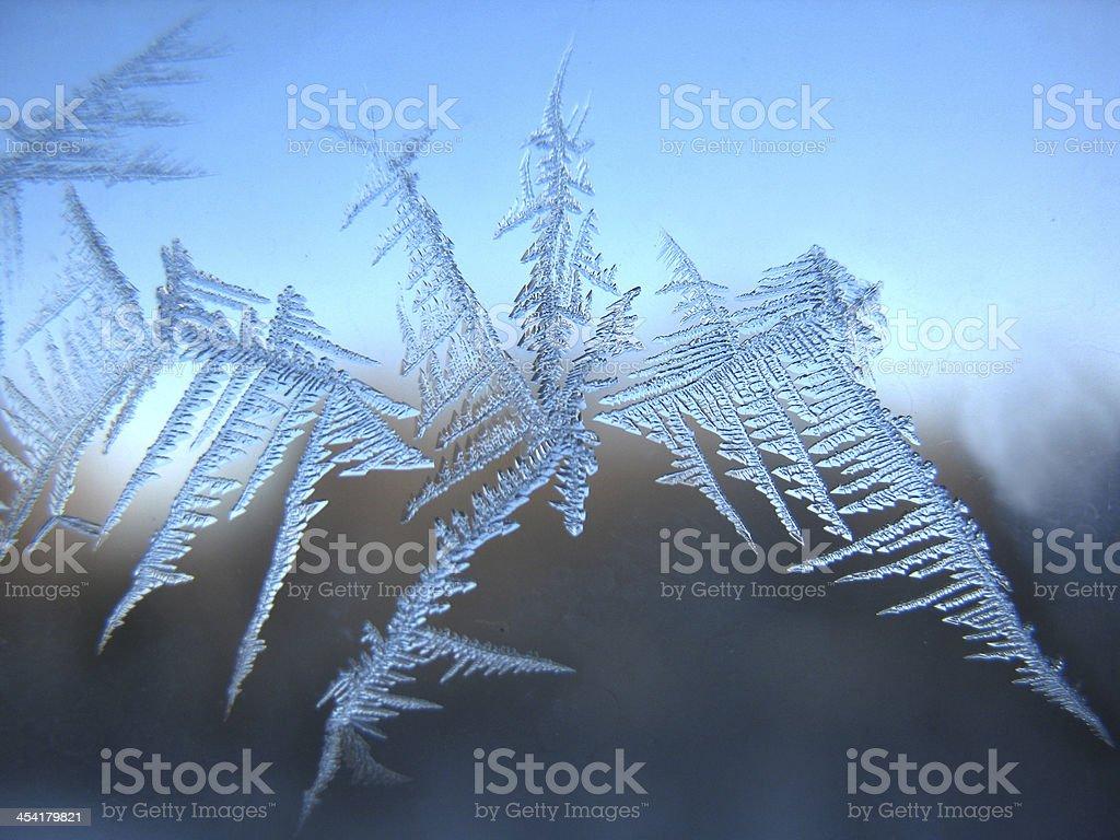 Frosty pattern on winter window royalty-free stock photo