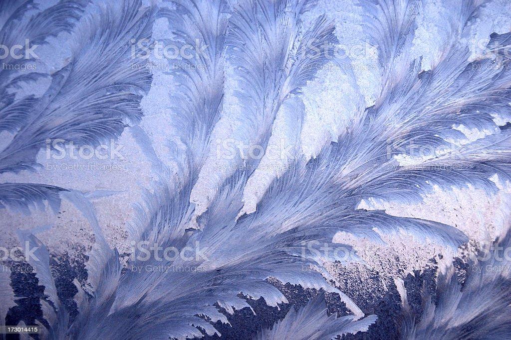 Frosty patterns royalty-free stock photo
