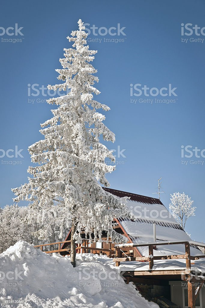 Frosty Tree and Cottage Vojsko Winter in Slovenia Europe stock photo