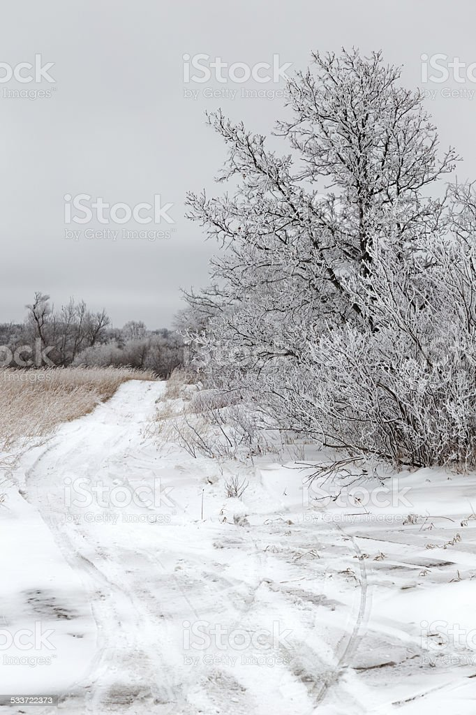 Frosty Winter Landscape stock photo