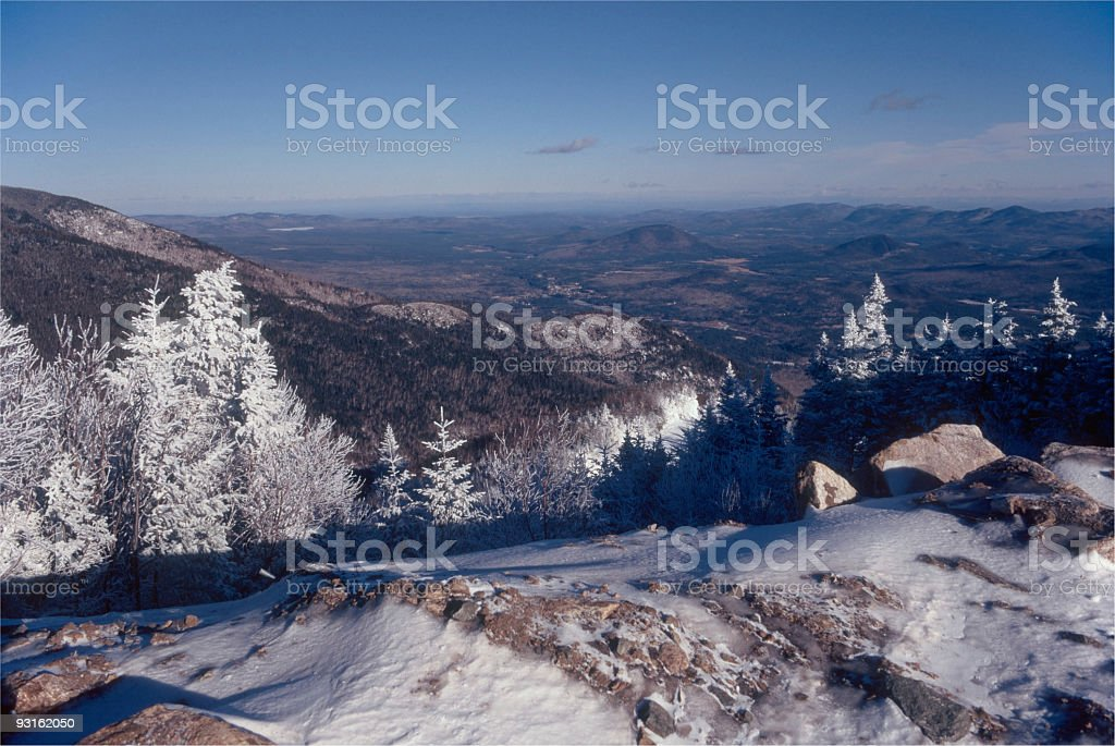 Frosty Winter Scene royalty-free stock photo