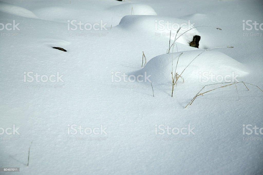 Frosty - Winter Wonderland 10 royalty-free stock photo