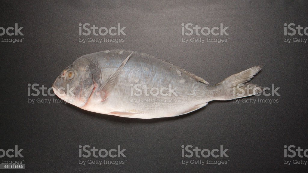 TOP VIEW: Frozed Dorade fish on black table stock photo