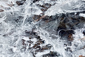 Frozen abstract