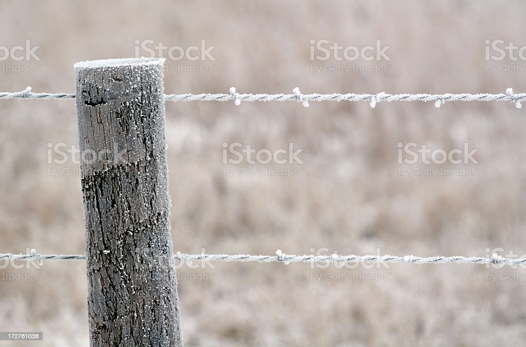 frozen barbed wire fence royalty-free stock photo