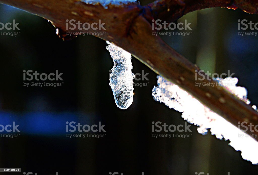 Frozen blue icicle melting into water droplet stock photo