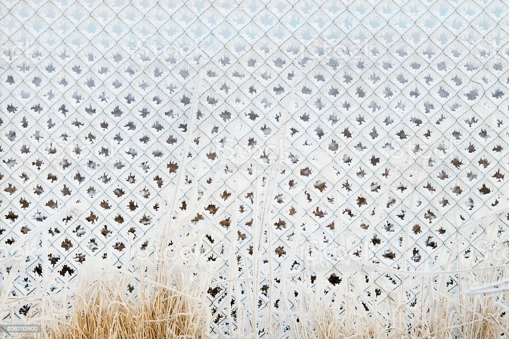 Frozen chain-link fencing stock photo