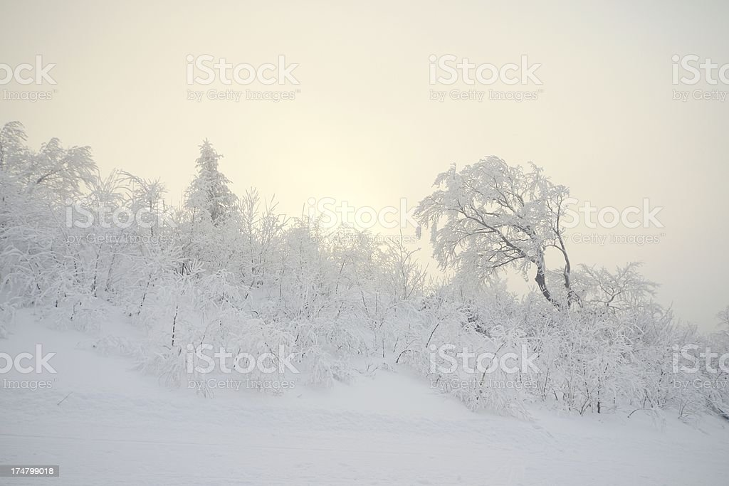 Frozen country royalty-free stock photo