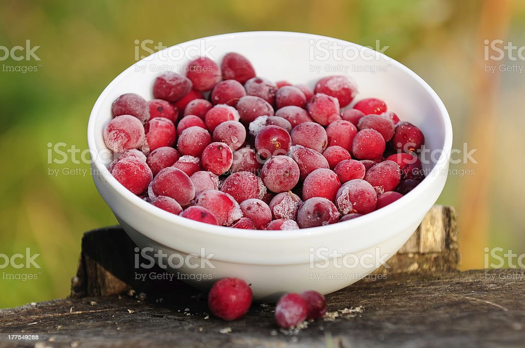 Frozen Cranberries in Bowl on Tree Stump stock photo