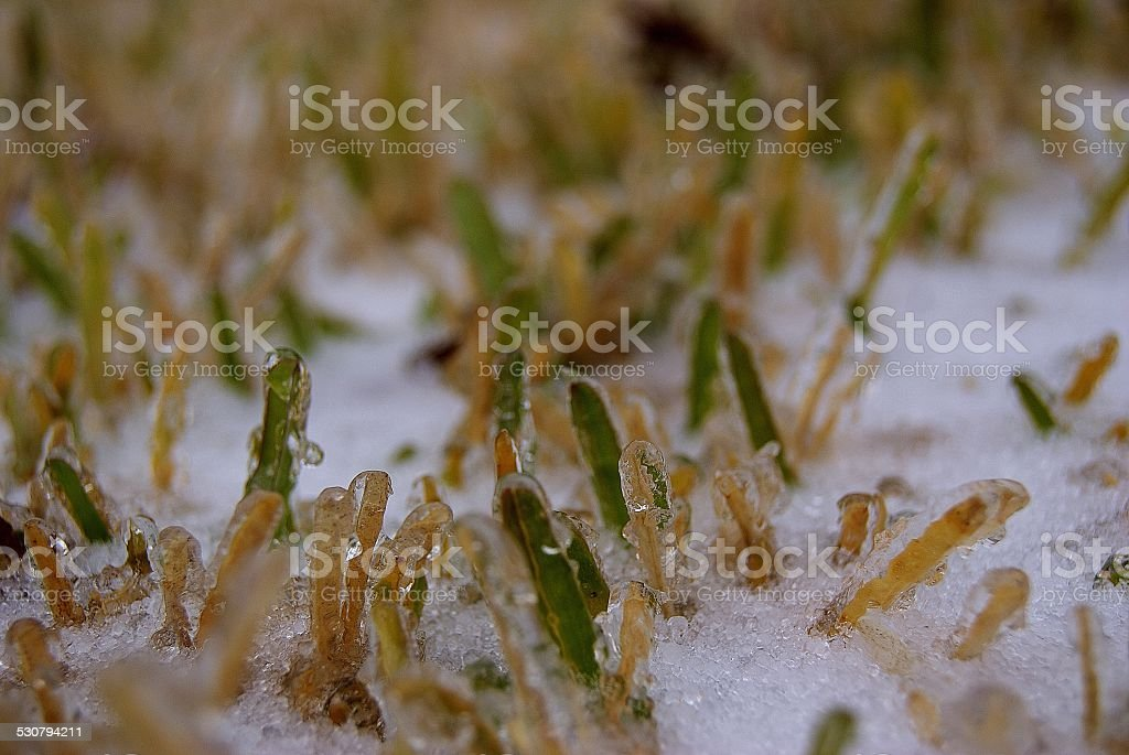 Frozen Earth royalty-free stock photo